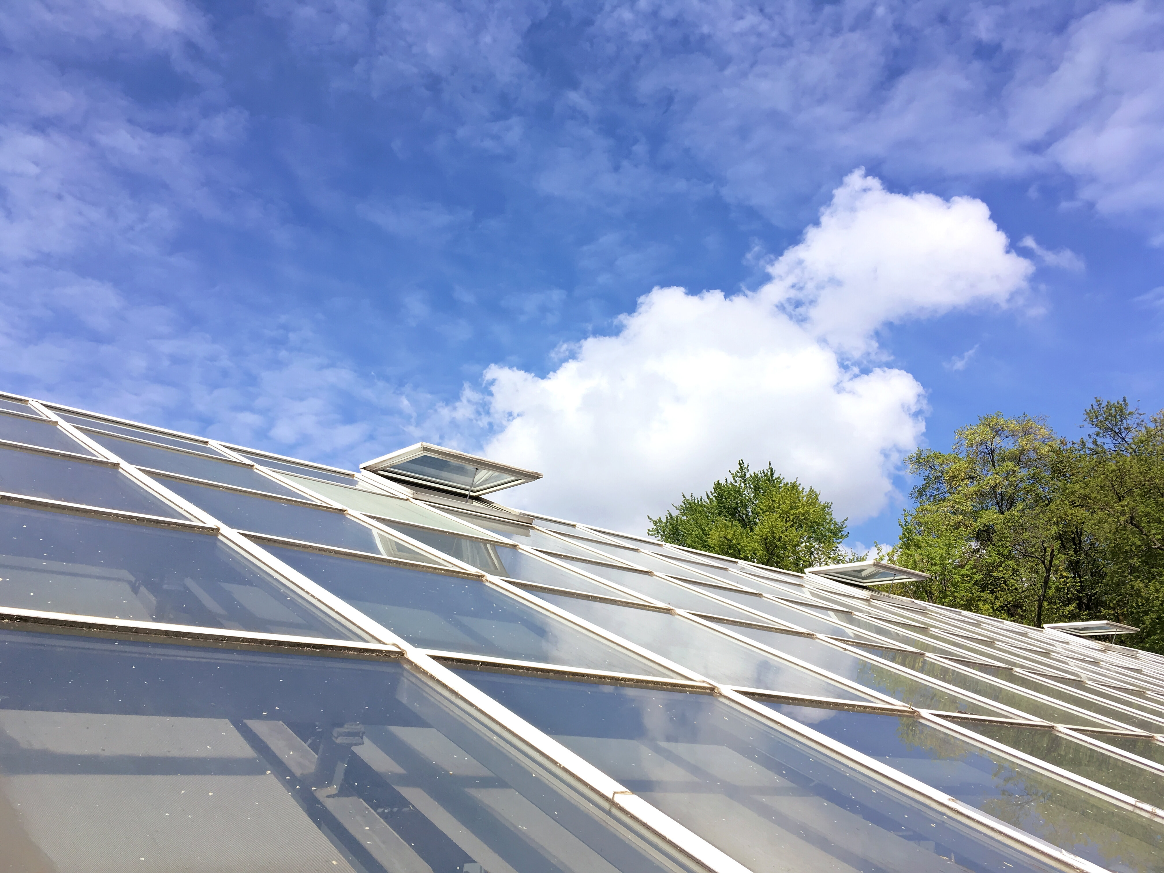 Conservatory Roofing Dorset United Kingdom